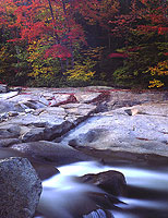 Swift River Autumn Display, New Hampshire